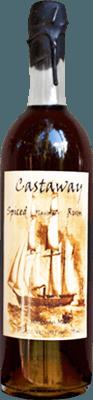 Medium castaway spiced rum