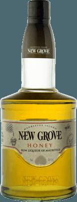 Medium new grove honey